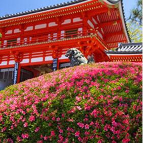 京都の観光名所で撮影した気分に