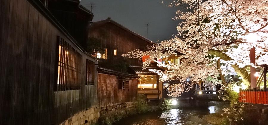 浴衣で歩く京都の祇園白川