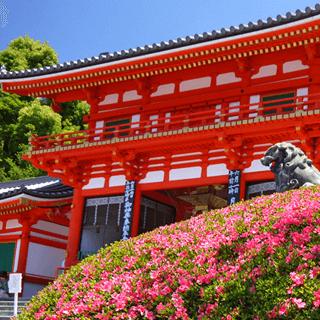祇園一周プラン