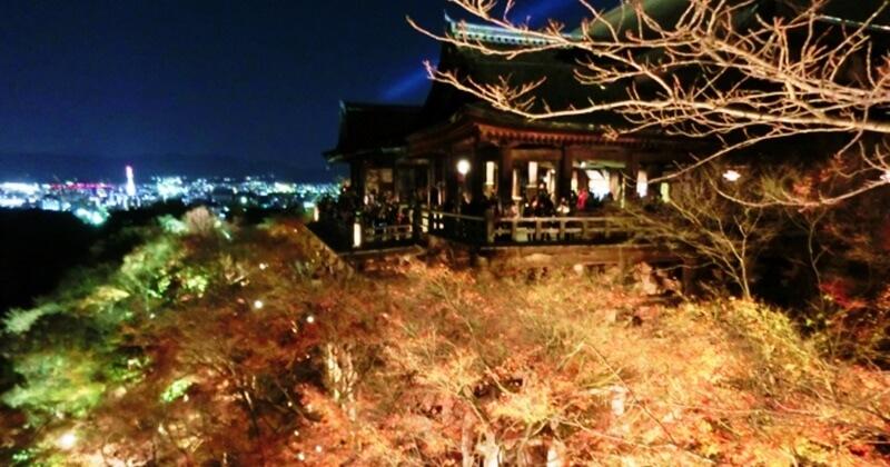 京都で紅葉を楽しむのなら夜と昼どっちがいい?