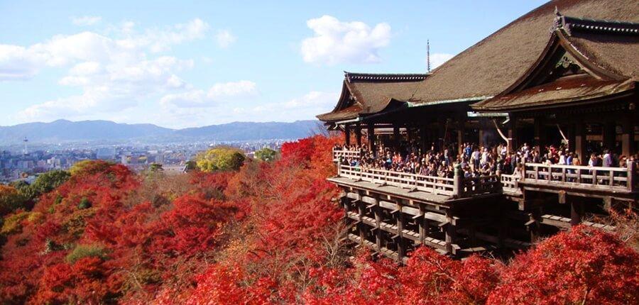 着物姿で清水寺の紅葉を見たいなら