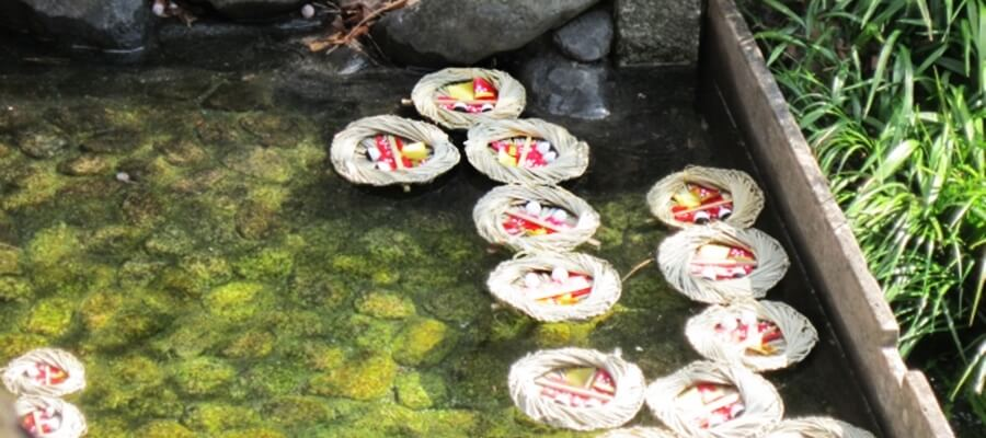 下賀茂神社の流し雛