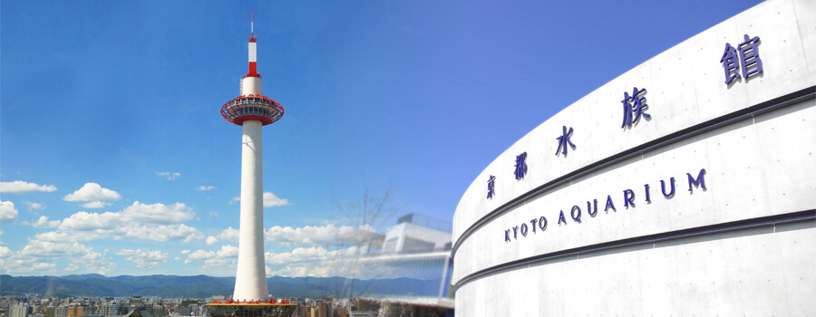 【京都駅周辺】駅近の名所ではんなりと過ごす